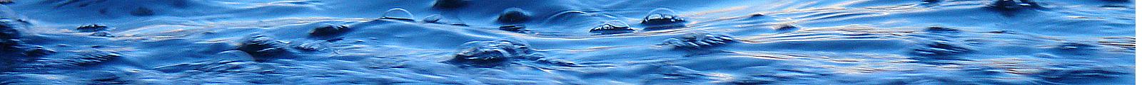 Brant Oswald Fly Fishing LLC